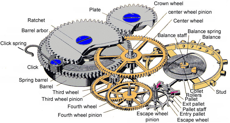 A schematic of a watch movement: many of the gears are necessary only to display the time rather than keep it (image courtesy www.horologist.com)