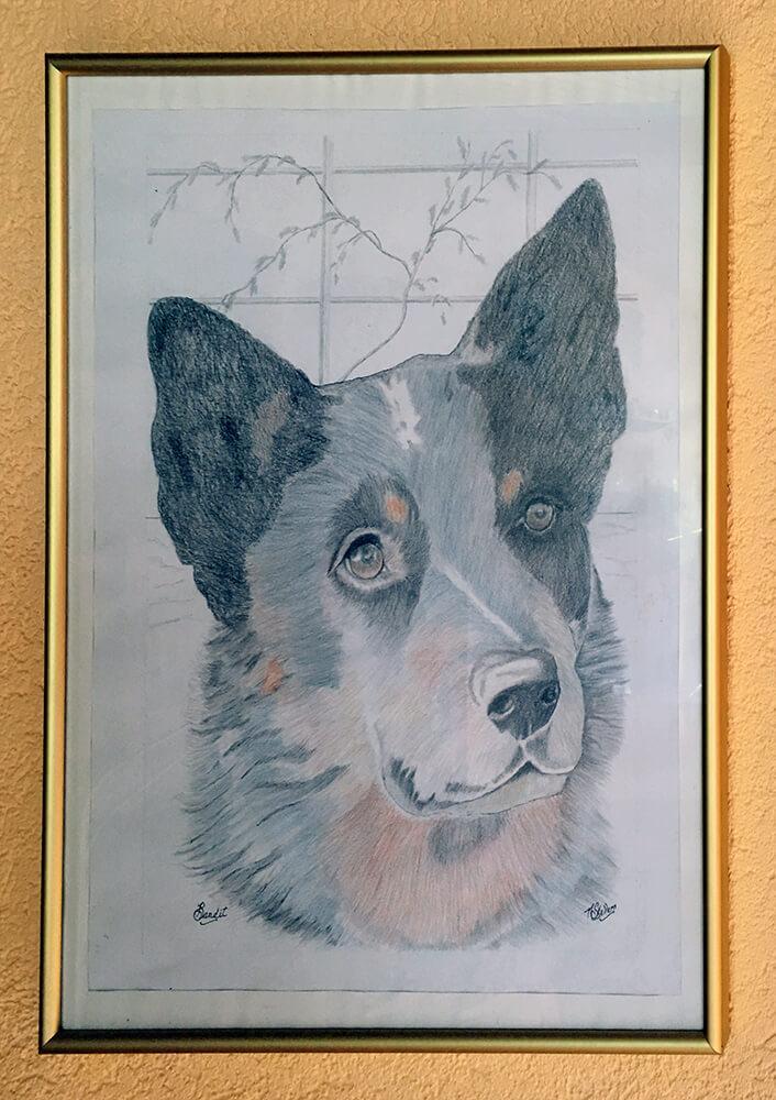 Sketch of Bandit by Neil Skellern