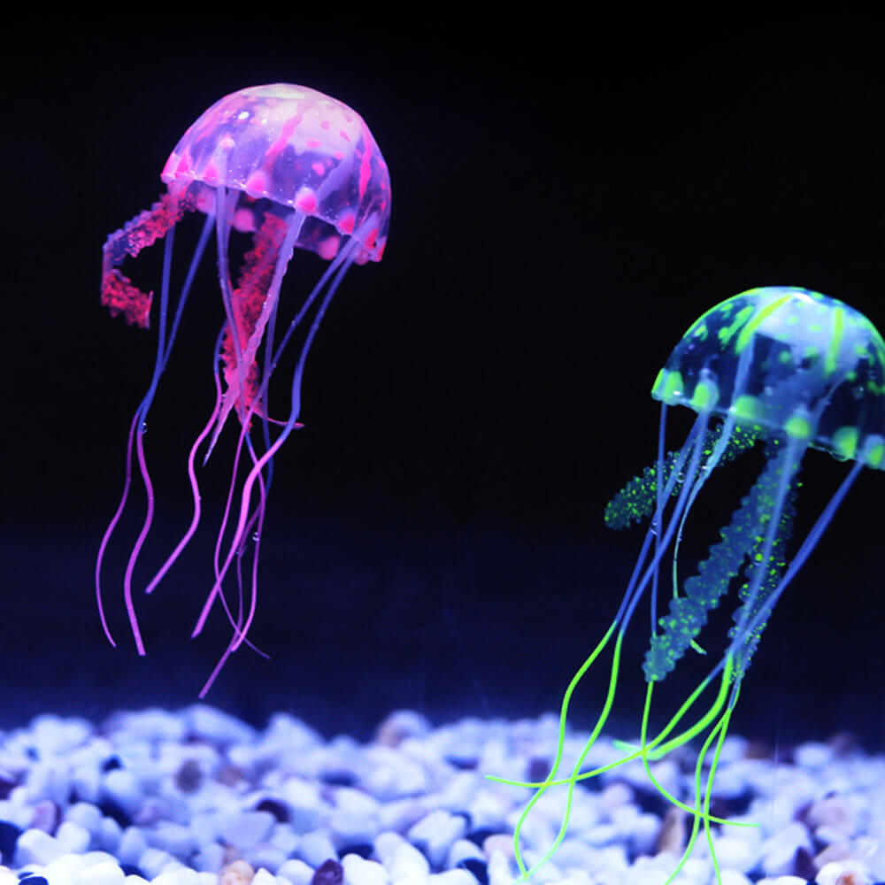 glowing jelly fish (image courtesy www.aliexpress.com)